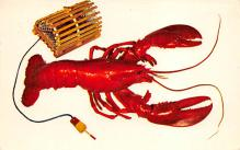 top006095 - Lobster Post Card