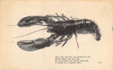 top006101 - Lobster Post Card