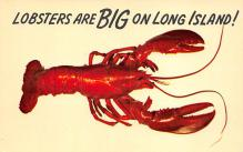 top006123 - Lobster Post Card