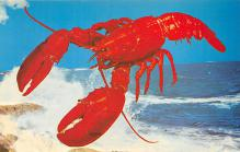 top006133 - Lobster Post Card