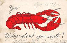 top006147 - Lobster Post Card