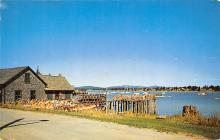 top006157 - Lobster Post Card