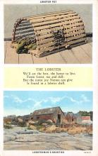 top006171 - Lobster Post Card