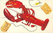 top006185 - Lobster Post Card