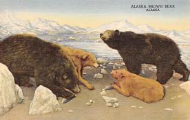 top006301 - Bear Post Card