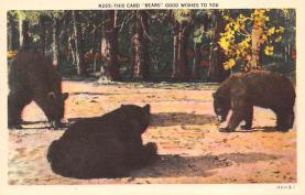 top006325 - Bear Post Card