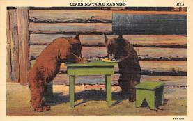 top006329 - Bear Post Card