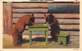 top006411 - Bear Post Card