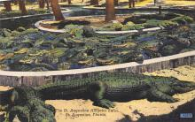 St Augustine FL