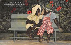 top006719 - Monkey Post Card