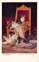 top006783 - Cat Post Card, Cats Postcards
