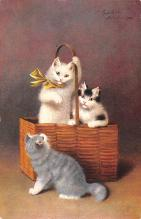 top006821 - Cat Post Card, Cats Postcards
