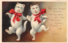 top006845 - Cat Post Card, Cats Postcards