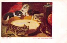 top006847 - Cat Post Card, Cats Postcards