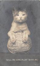 top006943 - Cat Post Card, Cats Postcards