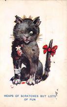 top006985 - Cat Post Card, Cats Postcards