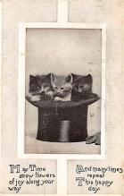 top006999 - Cat Post Card, Cats Postcards