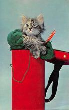 top007019 - Cat Post Card, Cats Postcards