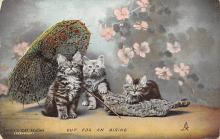 top007033 - Cat Post Card, Cats Postcards