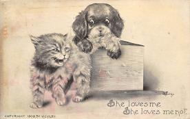 top007045 - Cat Post Card, Cats Postcards