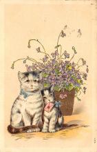 top007073 - Cat Post Card, Cats Postcards