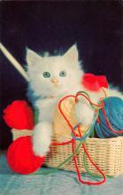 top007083 - Cat Post Card, Cats Postcards