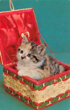 top007239 - Cat Post Card, Cats Postcards