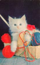 top007341 - Cat Post Card, Cats Postcards