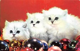 top007367 - Cat Post Card, Cats Postcards