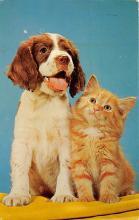 top007369 - Cat Post Card, Cats Postcards