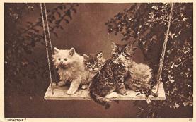 top007379 - Cat Post Card, Cats Postcards