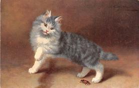 top007387 - Cat Post Card, Cats Postcards