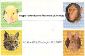 top007405 - Cat Post Card, Cats Postcards