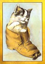 top007407 - Cat Post Card, Cats Postcards