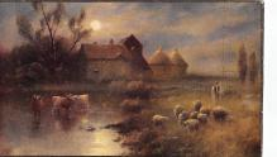 top007453 - Sheep Post Card