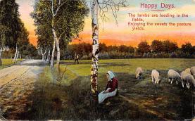 top007483 - Sheep Post Card