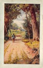 top007511 - Sheep Post Card