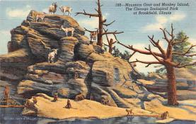 top007539 - Sheep Post Card