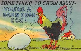 top007647 - Chicken Post Card