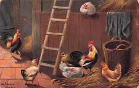 top007687 - Chicken Post Card