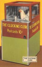 top007689 - Chicken Post Card