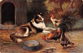 top007701 - Chicken Post Card