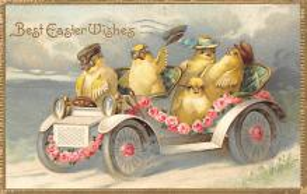 top007739 - Chicken Post Card