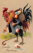 top007749 - Chicken Post Card