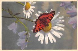 top007765 - Butterflies Post Card, Butterfly Postcard