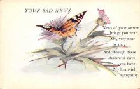 top007769 - Butterflies Post Card, Butterfly Postcard
