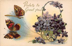top007797 - Butterflies Post Card, Butterfly Postcard