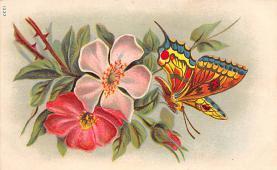 top007837 - Butterflies Post Card, Butterfly Postcard