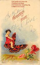 top007931 - Butterflies Post Card, Butterfly Postcard