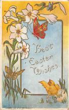 top007951 - Butterflies Post Card, Butterfly Postcard